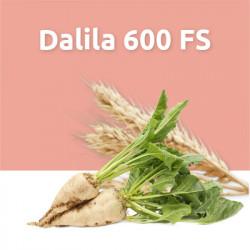 Dalila 600 FS (инсектицид протравитель)